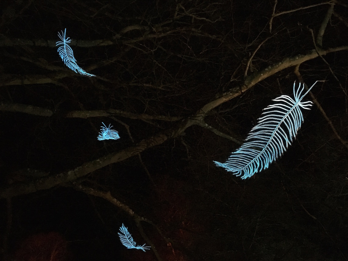 Tree of feathers, Spectacle of Light
